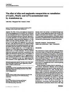 The effect of silica and maghemite nanoparticles on ...