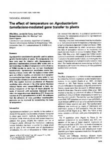 The effect of temperature on Agrobacterium ... - Wiley Online Library