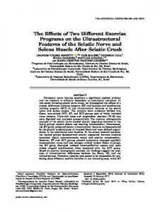 The Effects of Two Different Exercise Programs on the Ultrastructural