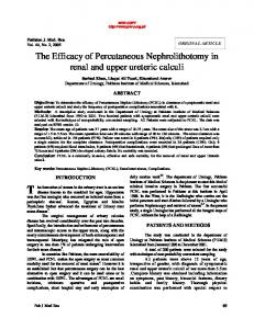 The Efficacy of Percutaneous Nephrolithotomy in ...