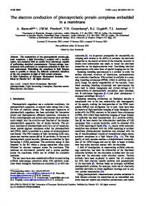 The electron conduction of photosynthetic protein complexes ...