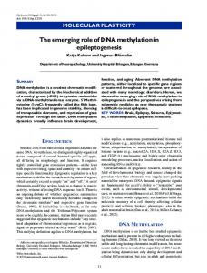The emerging role of DNA methylation in ... - Wiley Online Library