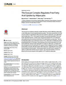The Exocyst Complex Regulates Free Fatty Acid Uptake by Adipocytes