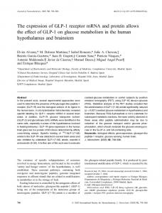 The expression of GLP-1 receptor mRNA and ... - Semantic Scholar