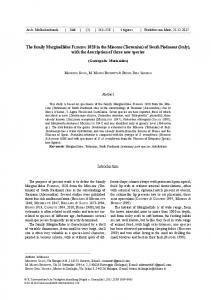 The family Marginellidae FLEMING 1828 in the