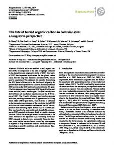 The fate of buried organic carbon in colluvial soils: a ... - Biogeosciences
