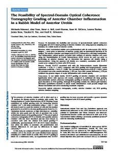 The Feasibility of Spectral-Domain Optical ... - Semantic Scholar
