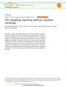 The Hedgehog signalling pathway regulates ... - Semantic Scholar
