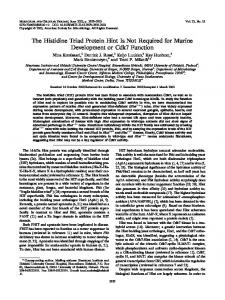 The Histidine Triad Protein Hint Is Not Required for Murine ...
