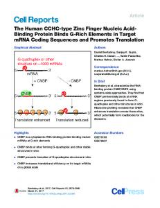 The Human CCHC-type Zinc Finger Nucleic Acid-Binding Protein ...