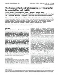 The human mitochondrial ribosome recycling factor is essential for cell ...