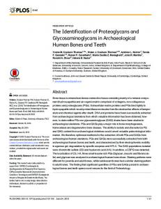 The Identification of Proteoglycans and ... - Semantic Scholar