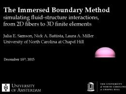 The Immersed Boundary Method!