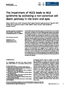 The impairment of HCCS leads to MLS syndrome by ...