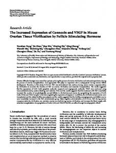 The Increased Expression of Connexin and VEGF in Mouse Ovarian ...