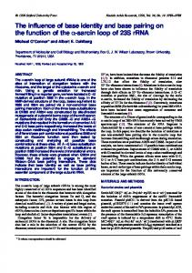 The influence of base identity and base pairing on the ... - BioMedSearch