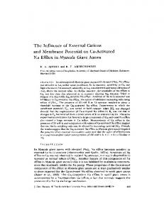The Influence of External Cations and Membrane Potential on Ca ...