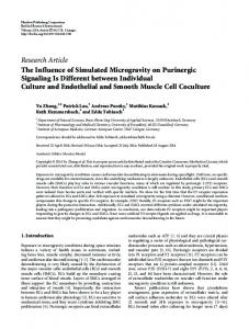 The Influence of Simulated Microgravity on Purinergic Signaling Is ...