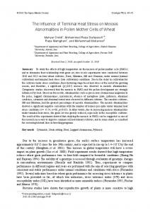 The Influence of Terminal Heat Stress on Meiosis ... - J-Stage