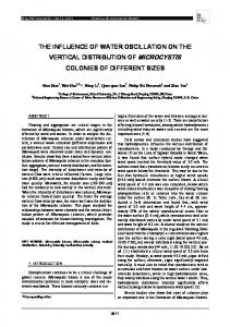 the influence of water oscillation on the vertical ...