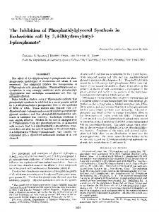 The Inhibition of Phosphatidylglycerol Synthesis in Escherichia coli by ...
