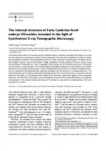 The internal structure of Early Cambrian fossil embryo ... - Springer Link