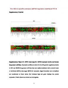 The ISG15-specific protease USP18 regulates ...