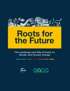 The Landscape and Way Forward on Gender and Climate Change