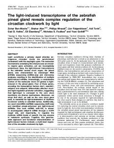 The light-induced transcriptome of the zebrafish pineal gland reveals ...