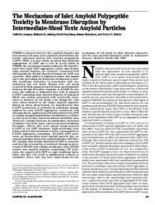 The Mechanism of Islet Amyloid Polypeptide Toxicity Is ... - Diabetes
