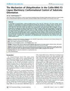 The Mechanism of Ubiquitination in the Cullin ... - Semantic Scholar