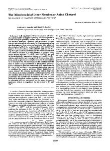 The Mitochondrial Inner Membrane Anion Channel - The Journal of ...