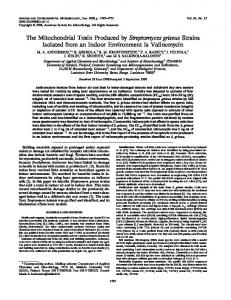 The Mitochondrial Toxin Produced by ... - Semantic Scholar