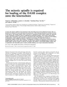 The mitotic spindle is required for loading of the DASH complex onto ...