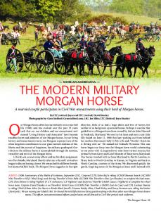 The MOdern MiliTary MOrgan hOrse