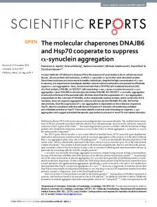 The molecular chaperones DNAJB6 and Hsp70 cooperate to