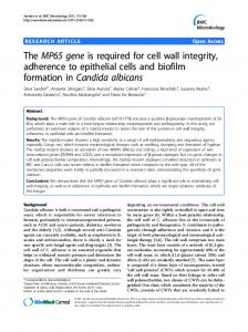 The MP65 gene is required for cell wall integrity ... - BioMedSearch