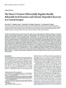 The Munc13 Proteins Differentially Regulate Readily Releasable Pool ...