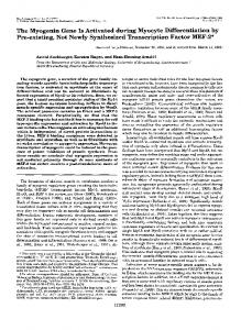 The Myogenin Gene Is Activated during Myocyte Differentiation by Pre ...