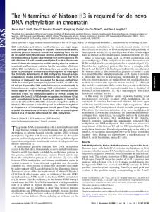 The N-terminus of histone H3 is required for de ... - Semantic Scholar