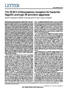 The NLRC4 inflammasome receptors for bacterial ... - Semantic Scholar