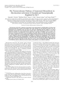 The Nonmevalonate Pathway of Isoprenoid Biosynthesis in ...
