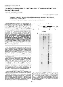 The Nucleotide Sequence of 8 S RNA Bound to Preribosomal RNA of ...