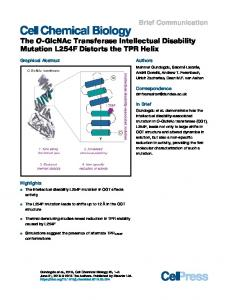 The O-GlcNAc Transferase Intellectual Disability Mutation ... - Cell Press