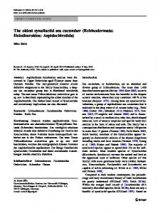 The oldest synallactid sea cucumber (Echinodermata ... - Core