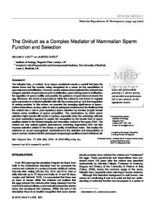 The oviduct as a complex mediator of ... - Wiley Online Library