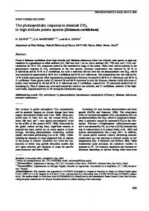 The photosynthetic response to elevated CO2 in high ...