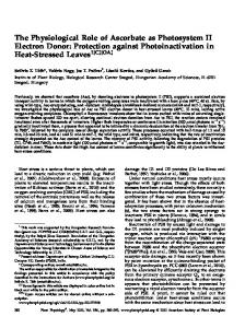 The Physiological Role of Ascorbate as Photosystem II Electron Donor