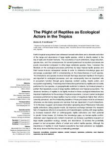 The Plight of Reptiles as Ecological Actors in the