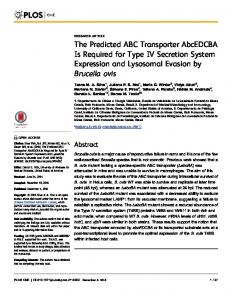 The Predicted ABC Transporter AbcEDCBA Is Required for ... - Plos